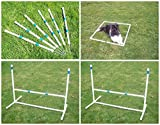 Agility Gear Outdoor Practice Set - I