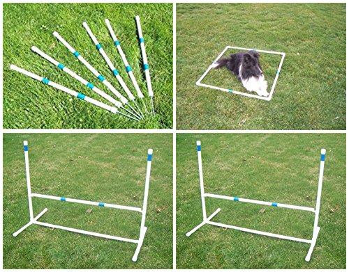 Dog Agility Starter Kit Obstacle - 8