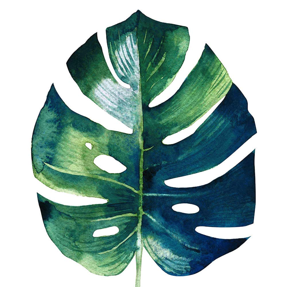 30cm Homeofying Kids Room Nordic Wall Posters /& Prints Wall Paintings Green Tropical Plant Leaves Painting Picture Art Home Modern Holiday Decoration Poster 1# 30