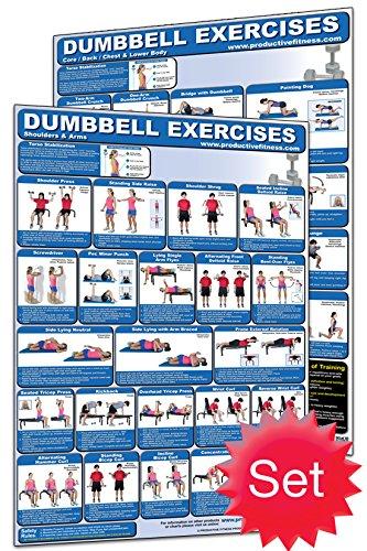 Productive Fitness Laminated Fitness Poster - Dumbbell Exerc