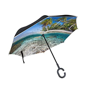 FANTAZIO Paraguas invertido de Doble Capa de tiburón de mar Transparente con protección contra Rayos UV