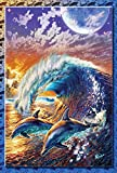 Toland Home Garden Surfin' Dolphins 28 x 40-Inch Decorative USA-Produced House Flag Review