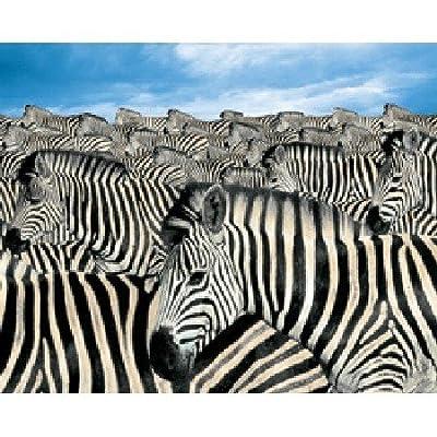 Springbok Zebra Herd 2000 Piece Jigsaw Puzzle By Springbok