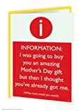 Funny Humorous 'Mother's Day Amazing Gift' Greetings Card