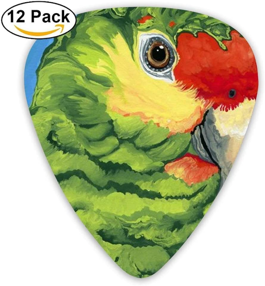 Funny Custom Poll Parrot Bird Acoustic Guitar Picks 12 Packs,Standard Bass Guitarist Music Gifts: Amazon.es: Instrumentos musicales