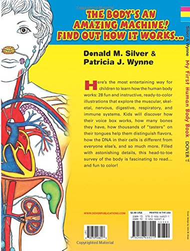the human body my infographic sticker activity book
