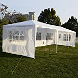 Winixson 10'x30'Canopy Party Wedding Outdoor Tent Heavy duty Gazebo Pavilion Cater Events