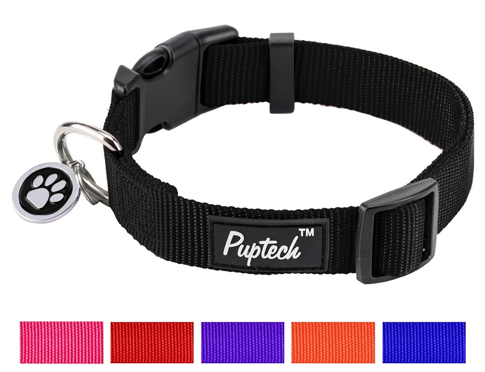 Basic Nylon Dog Collar Designer Solid Adjustable Puppy Pet Fancy Collars with ID Tag