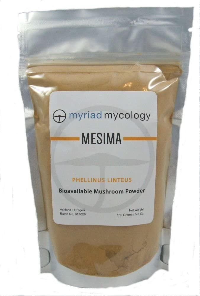 Myriad Mycology Mesima Mushroom Powder 5.2oz or 150g, Made in USA Sang Huang