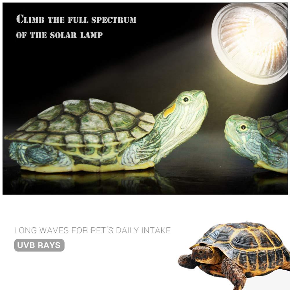 BovoYa Reptiles L/ámpara calentada L/ámpara de Tortuga de Acuario para Luces de Acuario L/ámpara de Calor hal/ógena UVA UVB de 25 W con rotaci/ón de 360 /° para Reptiles y Anfibios