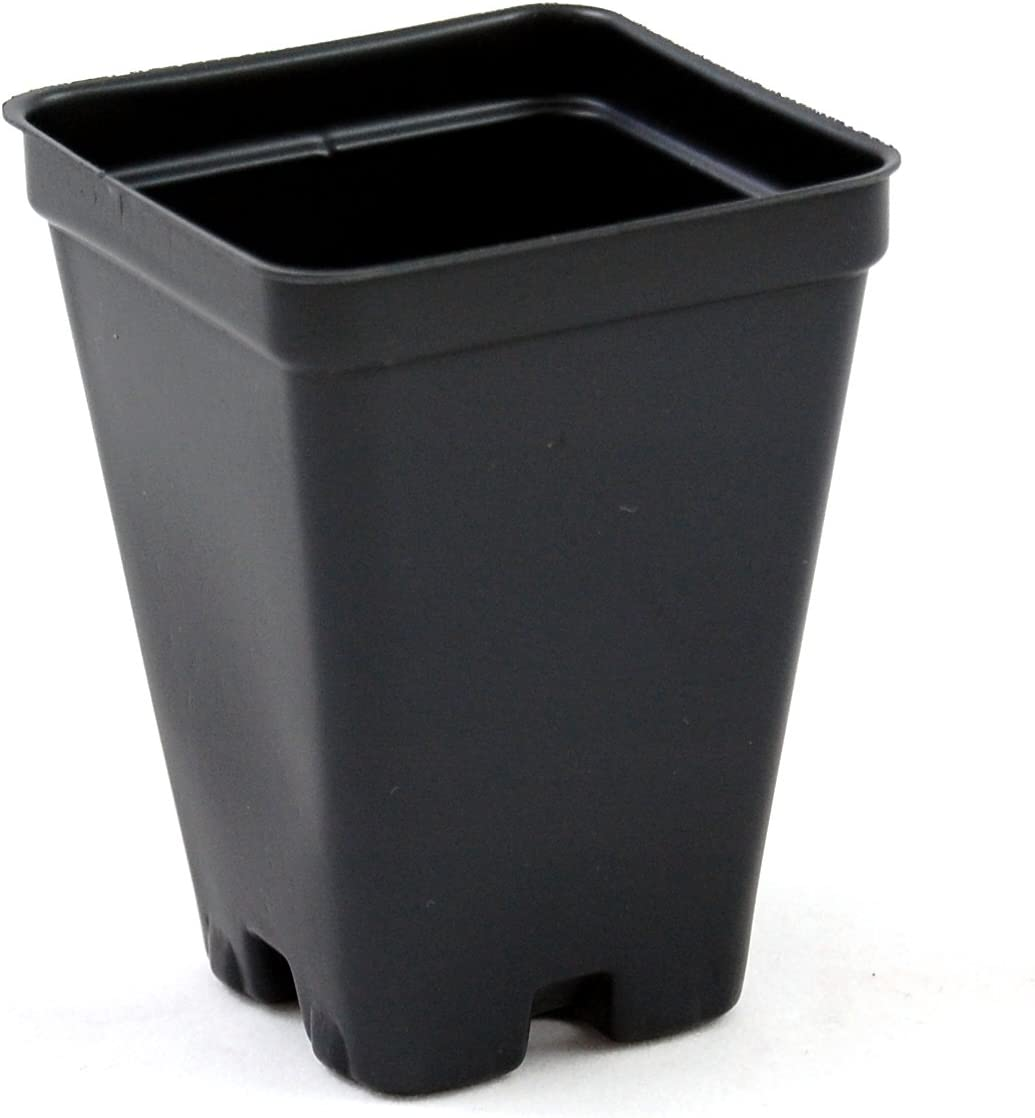 2.5 inch Square Greenhouse Pots – Black – Plastic – Deep – Case of 800 by Growers Solution