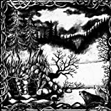 Die Isolation by MOLOCH (2013-05-04)