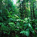 GladsBuy Tropical Rainforest 10' x 10' Computer Printed Photography Backdrop Nature Theme Background YKY-084