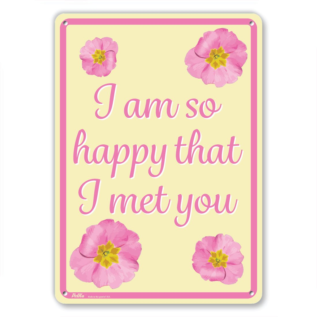 10 x 14 PetKa Signs and Graphics PKFW-0002-NA/_10x14I am so happy that I met you Aluminum Sign Pink Flowers on Yellow