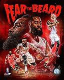 James Harden Houston Rockets 2014-2015 NBA Composite Photo (Size: 8' x 10')
