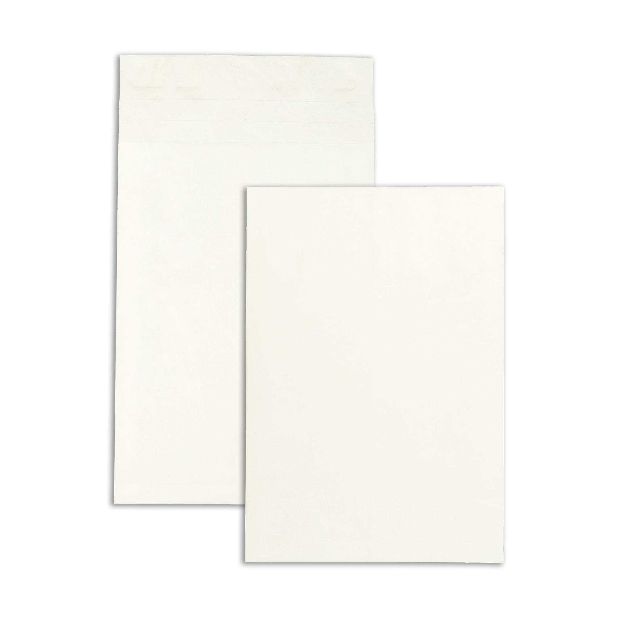 Survivor R4290 Tyvek Expansion Mailer, 12 x 16 x 2, White, 18lb (Case of 100)