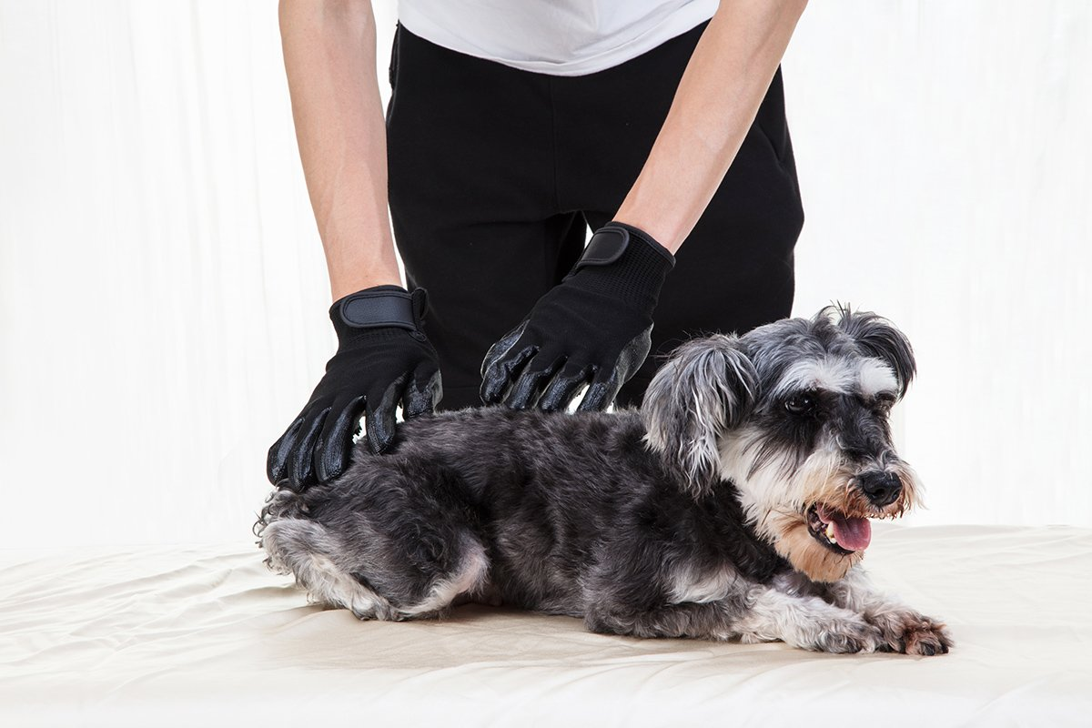 LibbyPet Pet Glooming Gloves for Cats and Dogs Hair Remover Deshedding Brush Glove Combing Massage for Long & Short Fur – Left & Right Hand (Black-S) by LibbyPet (Image #5)
