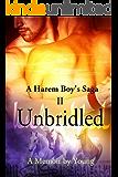 Unbridled (A Harem Boy's Saga Book 2) (English Edition)