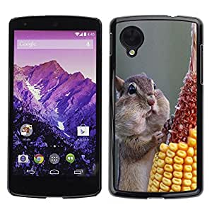 Exotic-Star Snap On Hard Protective Case For LG Google NEXUS 5 / E980 ( Funny Hungry Squirrel )