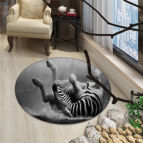 Africa Round Area Rug Zebra Rolling in the Dust Artistic Savage Animal Mammal Activity Eco PhotoOriental Floor and Carpets Black and White by smallbeefly