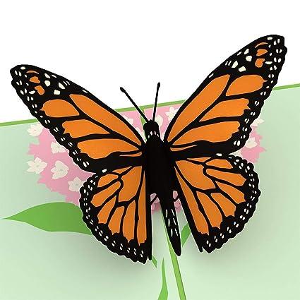 Lovepop Tarjeta emergente de mariposa, tarjetas 3D, tarjeta ...