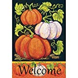 Cheap Magnolia 30″ x 44″ Fall Pumpkins Welcome Flag, Large