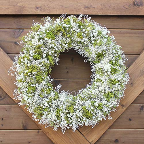 Handmade Natural Dried Floral Wreath | Green and White Arrangement | Preserved Floral Home Accent | All Season Decorative -
