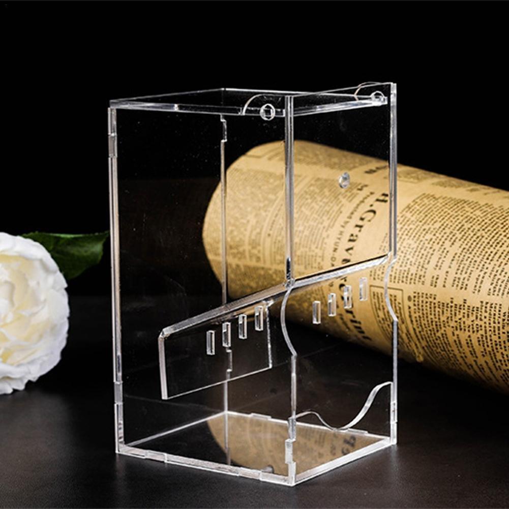 Purebesi Mangeoire Oiseaux Nourrisseur Acrylique de Perroquet Transparent alimenteur Automatique de Nourriture Birds Feeder