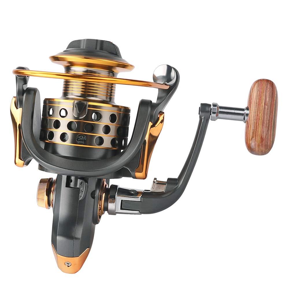 DAGEZI Best Spinning Reel for Freshwater 14 Superior Ball ...