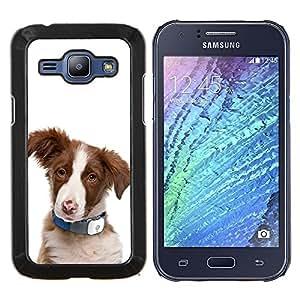 LECELL--Funda protectora / Cubierta / Piel For Samsung Galaxy J1 J100 -- Pastor australiano del perrito del perro de ovejas --