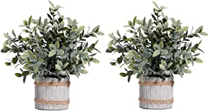HC STAR 2 Pcs Artificial Plants Small Potted Plastic Fake Plants Green Rosemary Faux Greenery Topiary Shrubs Plant for Home Decor Office Desk Bathroom Farmhouse Tabletop Indoor House Decorations