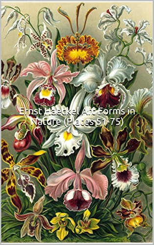 Hansen Plates - Ernst Haeckel Art Forms in Nature (Plates 51-75): (Introductions to Art) 25 Full Color Plates