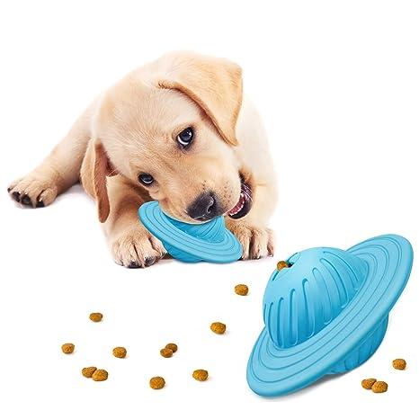 Amazon.com: Juguete de pelota para perro, IQ, dispensador de ...