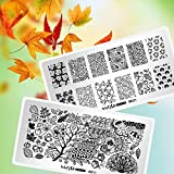 Whats Up Nails - Fall Stamping Plates 2 pack (A011, B021) for Autumn Thanksgiving Day Nail Art Design
