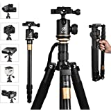 """Lightweight Camera Travel Tripod, Portable Projector Stand with 360°Panorama Ball Head,1/4"""" Quick Release Plate,Bubble Level and Carry Bag for Canon Nikon Sony Olympus Fuji Projector DV Camcorders"""