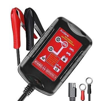 Amazon.com: AUDEW Cargador de batería de coche totalmente ...