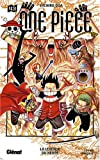 One piece Vol.43