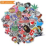 Xpassion Stickers [100 PCS] Waterproof Vinyl Stickers, Motorcycle Bicycle Luggage Laptop Decal Graffiti Patches Skateboard Bumper Stickers, Not fade in the sun