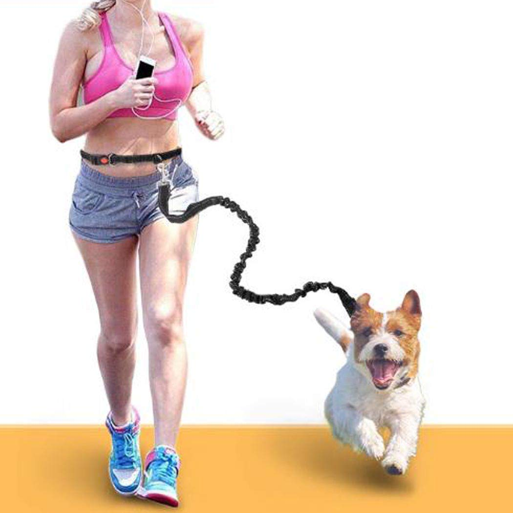 colorMilky Hands-Free-Dog-Leash Dogs Running Lead Bungee Black