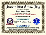 Seizure Alert Service Dog Certificate - Customizable with Dogs / Handlers Name
