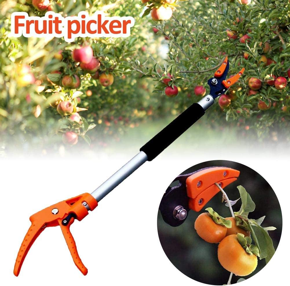 Garden Long Reach Tree Pruner,Long Handled Secateurs for Tree Branches,Fruit Pick Ardentity Hold Snapper Pruner Long Handle Reach