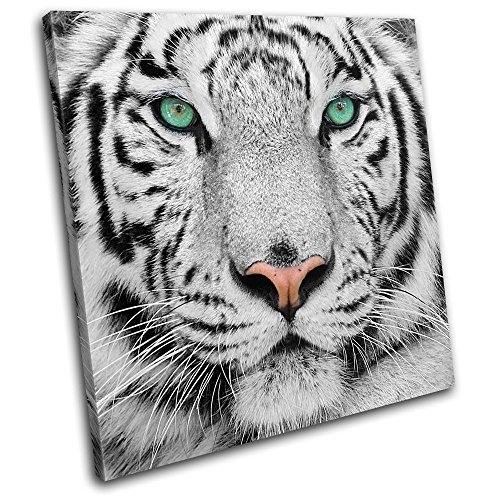 Bold Bloc Design - Siberian Tiger Eye Animals 90x90cm SINGLE Canvas Art Print Box Framed Picture Wall Hanging - Hand Made In The UK - Framed And Ready To Hang