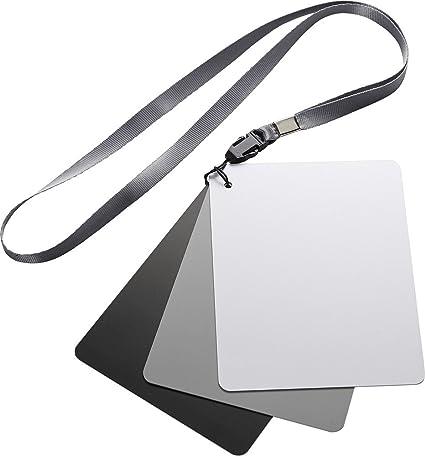 Insignia - Balance de blancos Tarjeta de grises Kit (3-Count ...