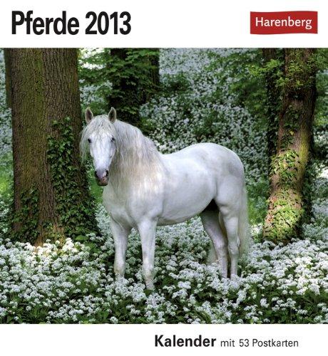 Pferde 2013: Sehnsuchts-Kalender. 53 heraustrennbare Farbpostkarten