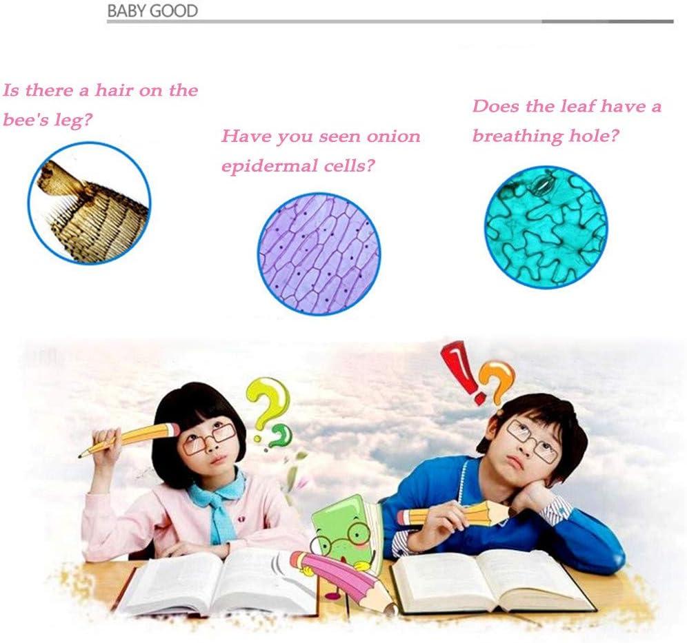 HSKB WiFi Digital Mikroskop USB Elektronisch Digitalmikroskop Endoskop Vergr/ö/ßerung Endoskop Microscope 1600X mit 8 LEDs f/ür Handy Industrial QC Inspektion