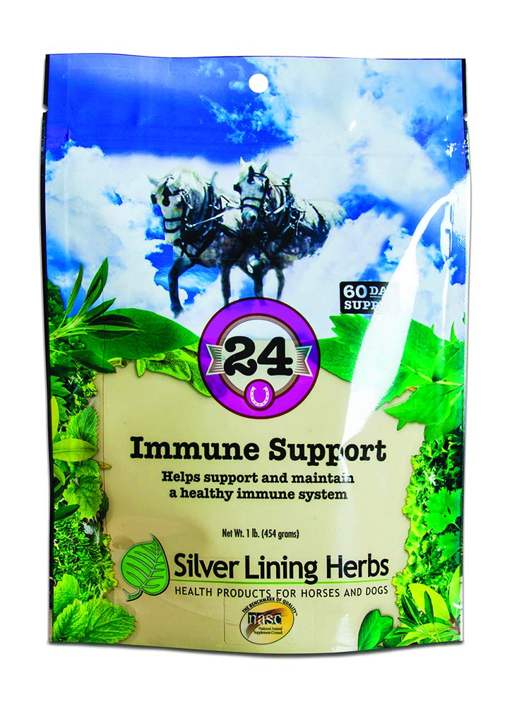 Silver Lining Herbal Equine Silver Lining Herbs 24 Immune Support Supplement