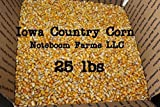 whole feed corn - Whole Kernel Corn- by NOTEBOOM FARMS