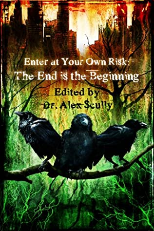 book cover of Enter at Your Own Risk: The End is the Beginning