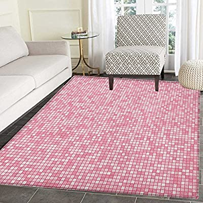 Amazon.com: Pink and White Rugs for Bedroom Gingham Style Mosaic ...
