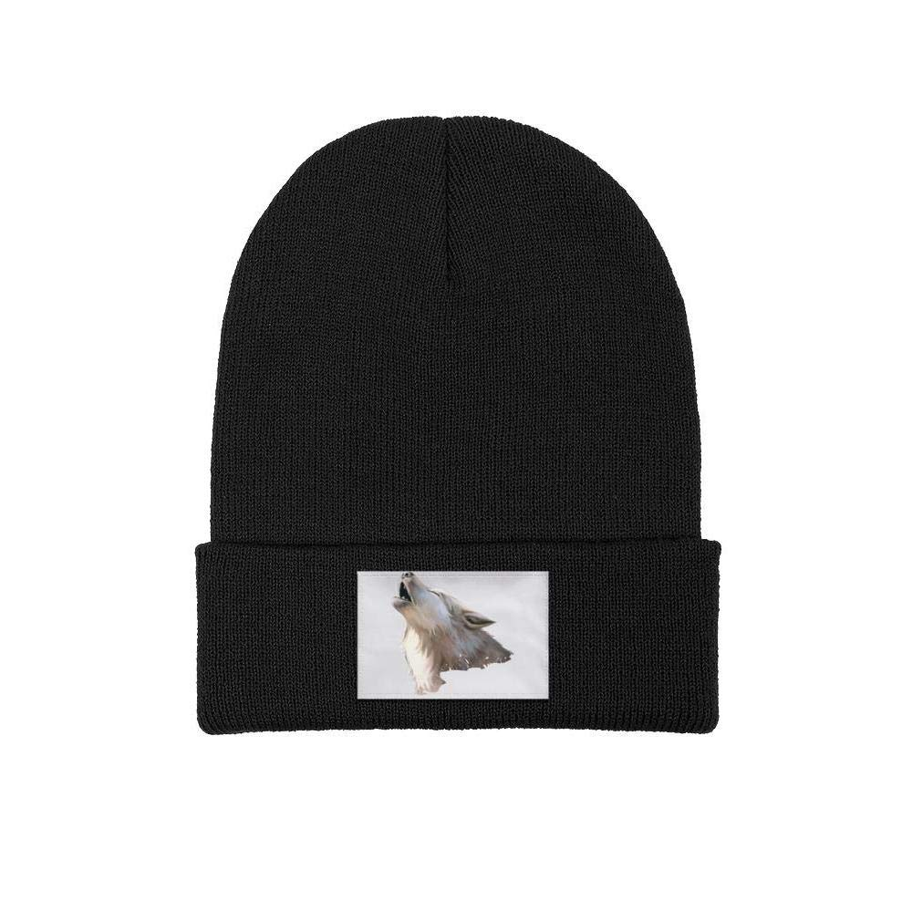 XIAOWUGO Winter Beanie Hat American Flag Independence Day Knit Skull Cap for Men Women